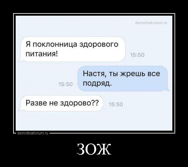 zoj_169754.jpg