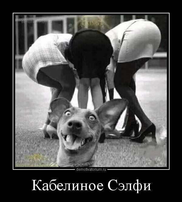 kabelinoe_selfi_170127.jpg