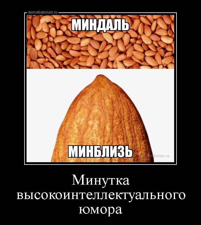 minutka_visokointellektualnogo_umora_170076.jpg