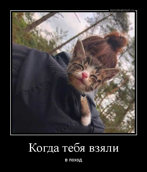 kogda_tebja_vzjali_170363.jpg