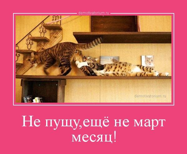 ne_pushueshe_ne_mart_mesjac_170308.jpg