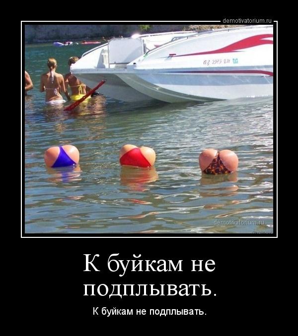 k_bujkam_ne_podplivat_170271.jpg