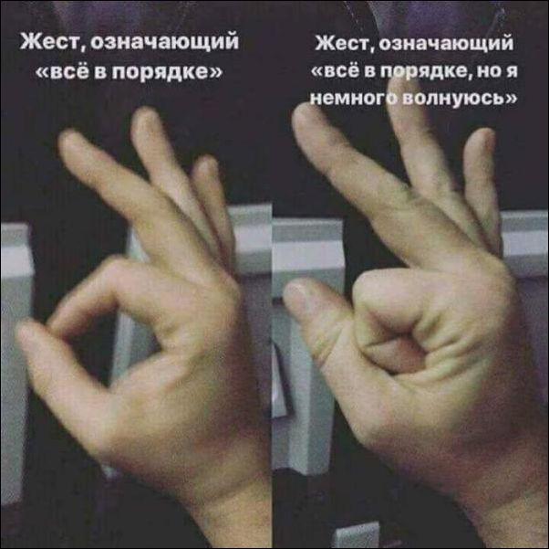 1524859567_fotopodborka-36.jpg
