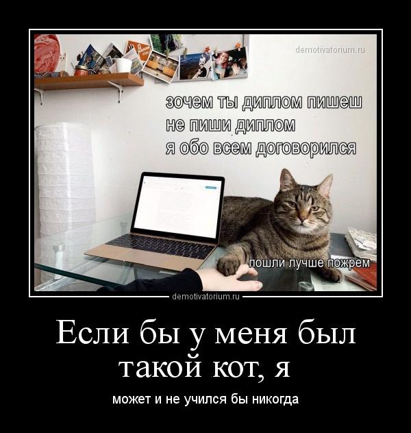 esli_bi_u_menja_bil_takoj_kot_ja_170577.jpg