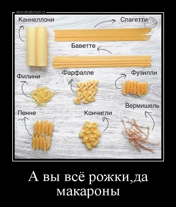 a_vi_vse_rojkida_makaroni_170177.jpg