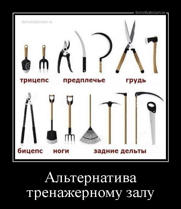 alternativa_trenajernomu_zalu_170943.jpg