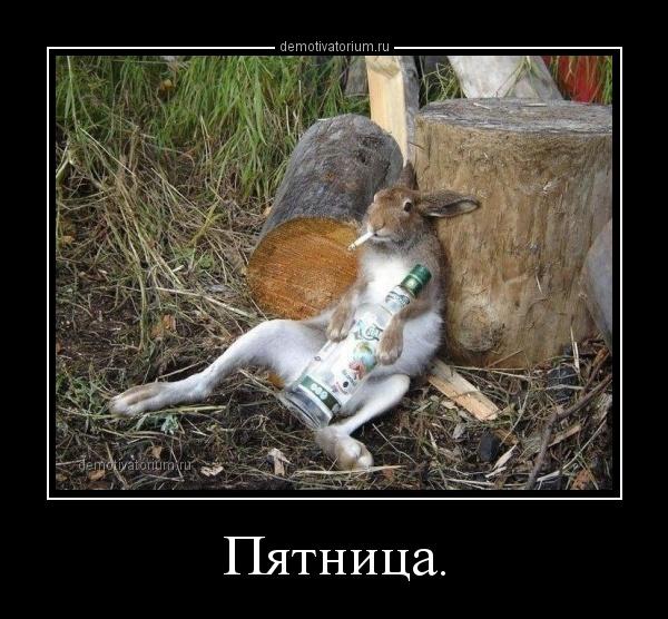 pjatnica_170954.jpg