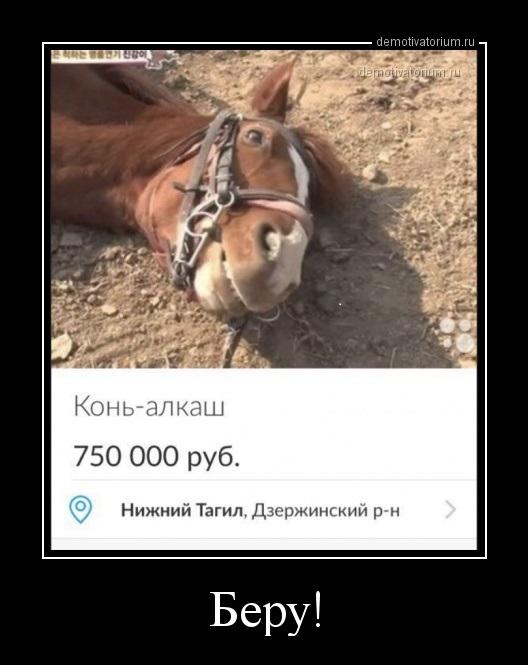 beru_171005.jpg