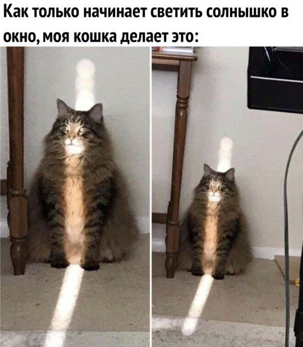 fotopodborka_chetverga_43_foto_18.jpg