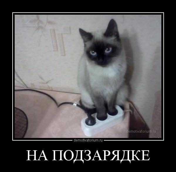na_podzarjadke_170798.jpg
