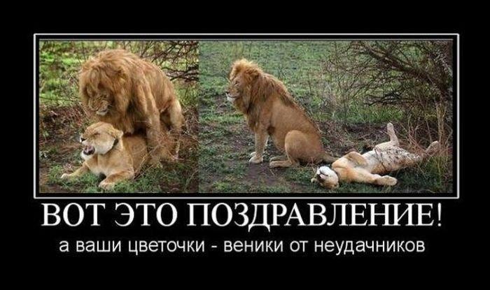 1362638113_prikoly-k-8-marta-22.jpg