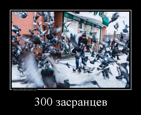 300_zasrancev_171739.jpg
