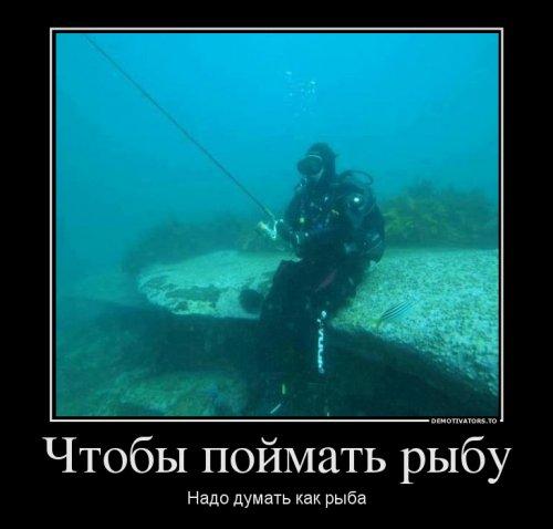 1525674196_demotivatory-8.jpg