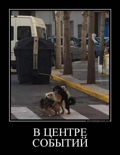demotivatorium_ru_v_centre_sobitij_156739.jpg