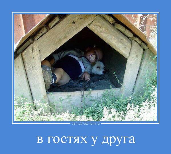 demotivatorium_ru_v_gostjah_u_druga_52405.jpg