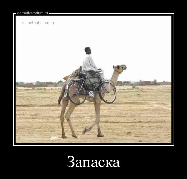 demotivatorium_ru_zapaska_156959.jpg