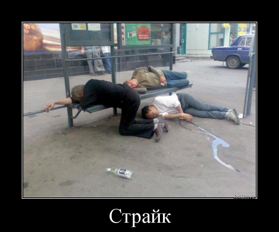 1526279501_demotivatory-12.jpg