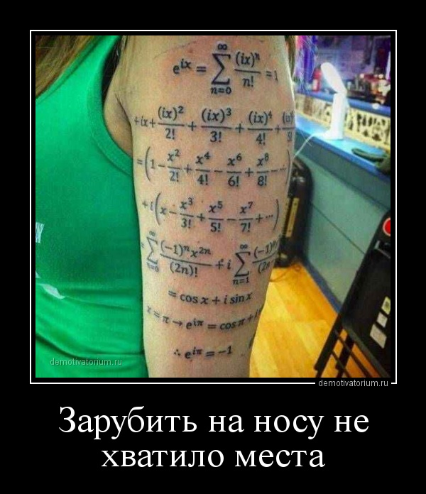 demotivatorium_ru_zarubit_na_nosu_ne_hvatilo_mesta_157075.jpg