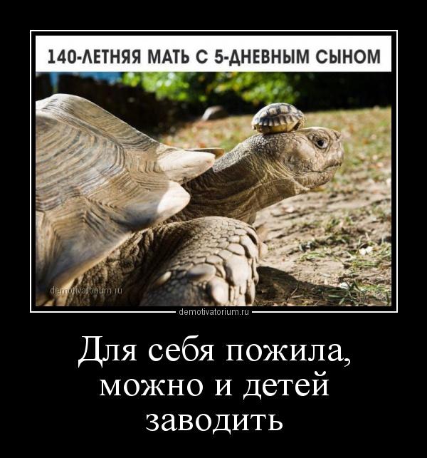 demotivatorium_ru_dlja_sebja_pojila_mojno_i_detej_zavodit_157620.jpg