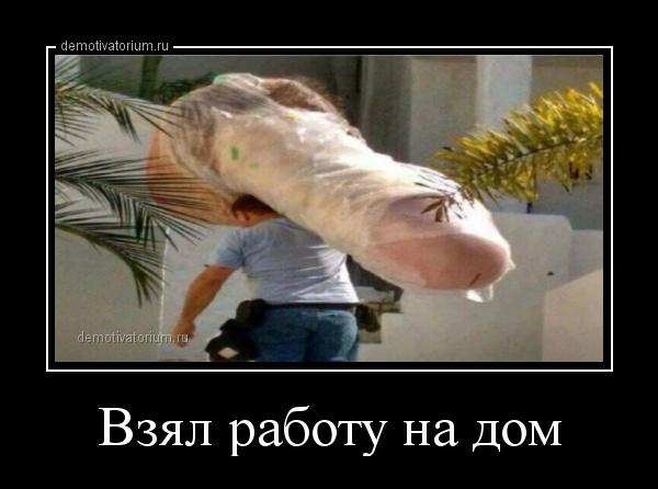 demotivatorium_ru_vzjal_rabotu_na_dom_157595.jpg