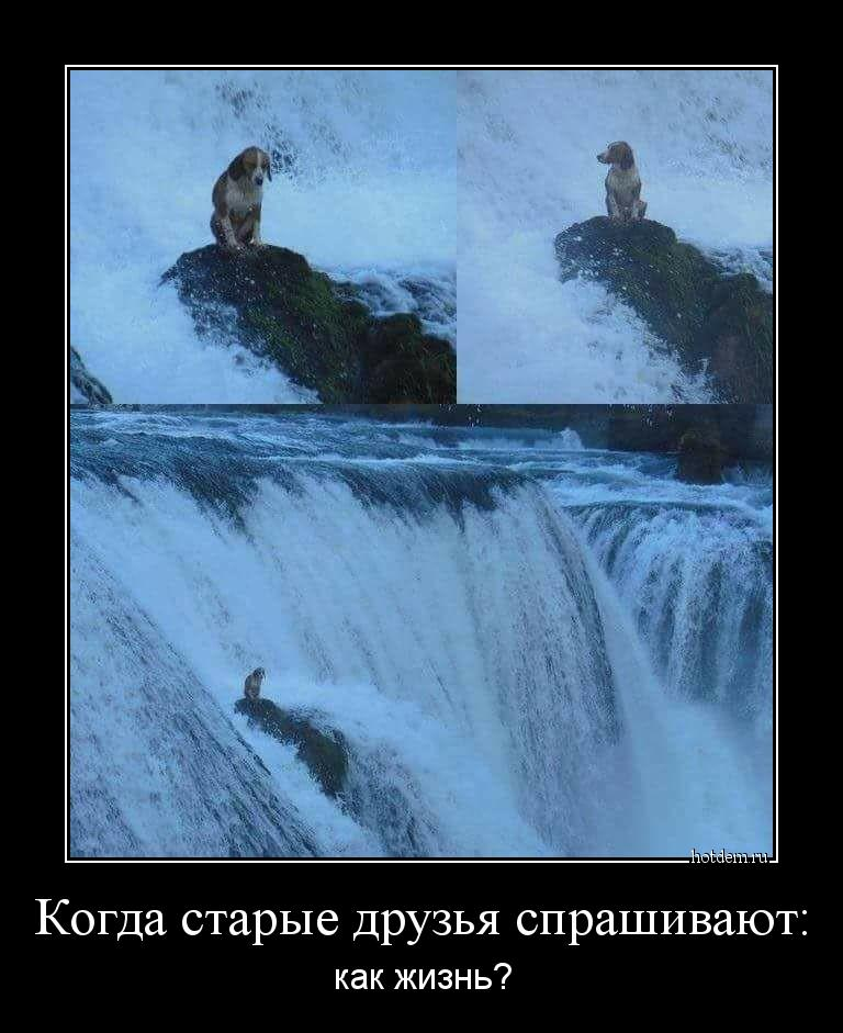 hotdem_ru_337714082253709987987.jpg