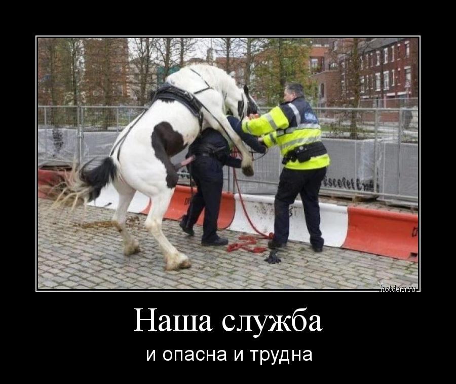hotdem_ru_097573912720068228572.jpg