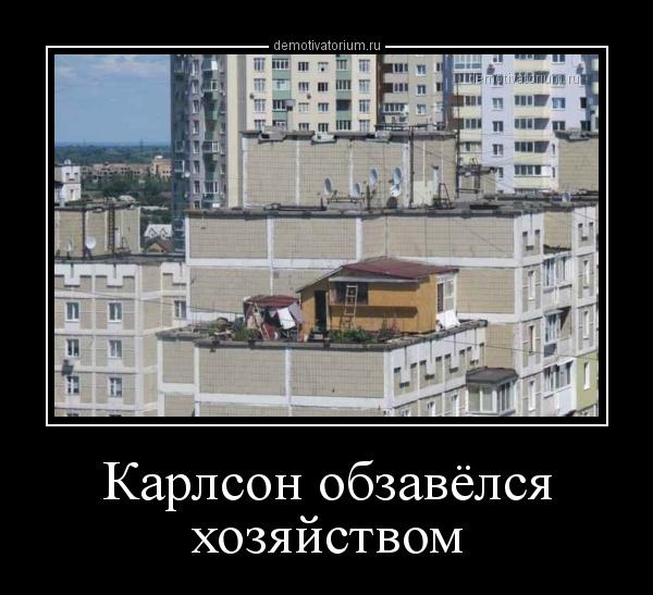 karlson_obzavelsja_hozjajstvom_158119.jpg