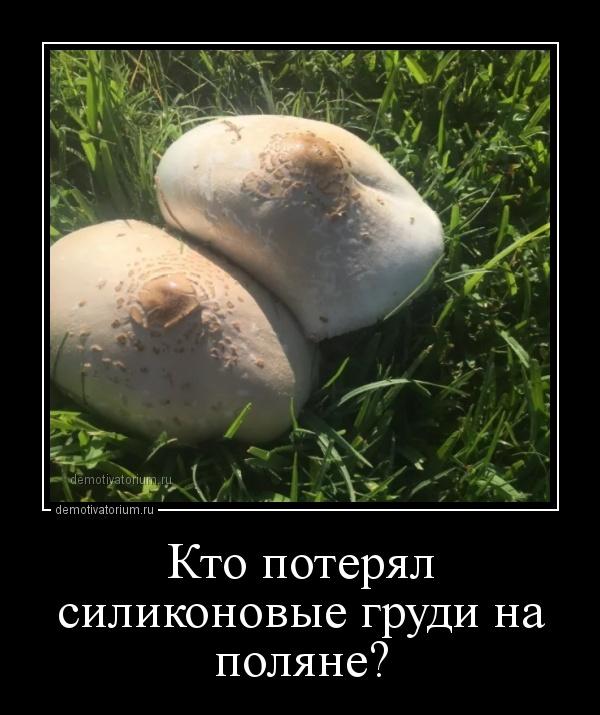 kto_poterjal_silikonovie_grudi_na_poljane_159203.jpg