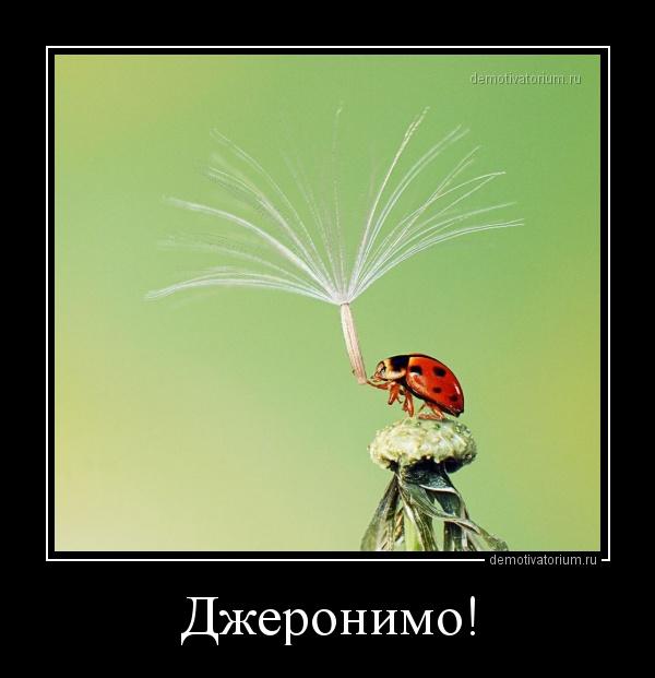 _djeronimo_158768.jpg