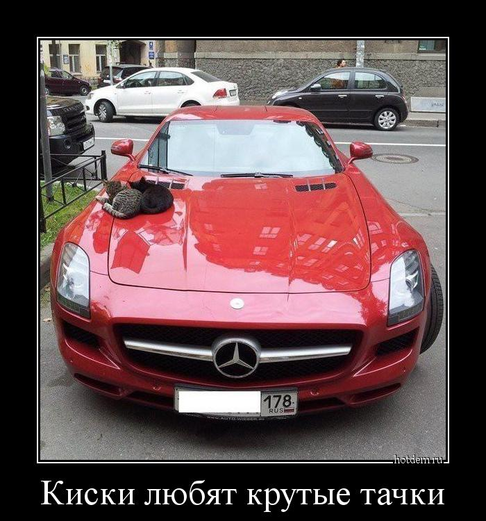 hotdem_ru_963029011302120218611.jpg