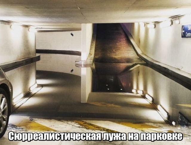 fotopodborka_subboty_127_foto_1za.jpg