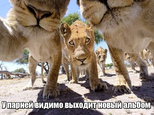 fotopodborka_subboty_127_foto_1.jpg