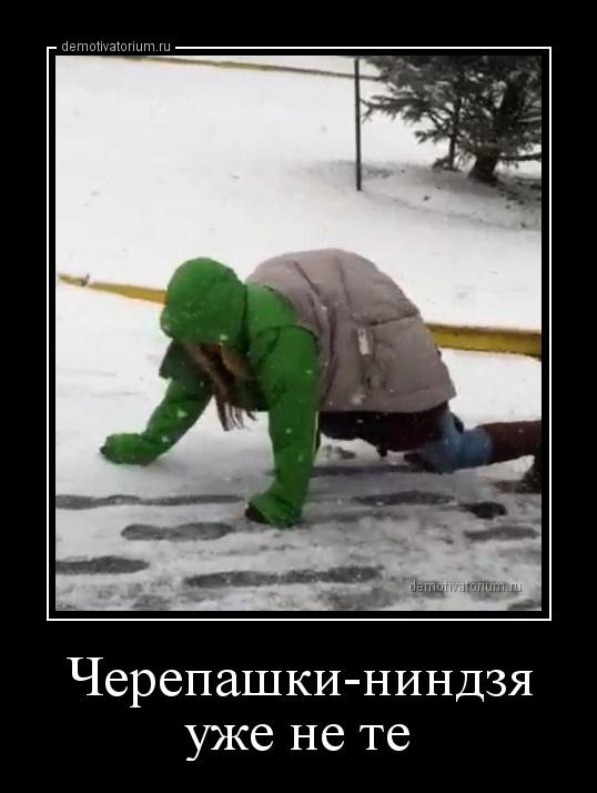 cherepashkinindzja_uje_ne_te_158697.jpg
