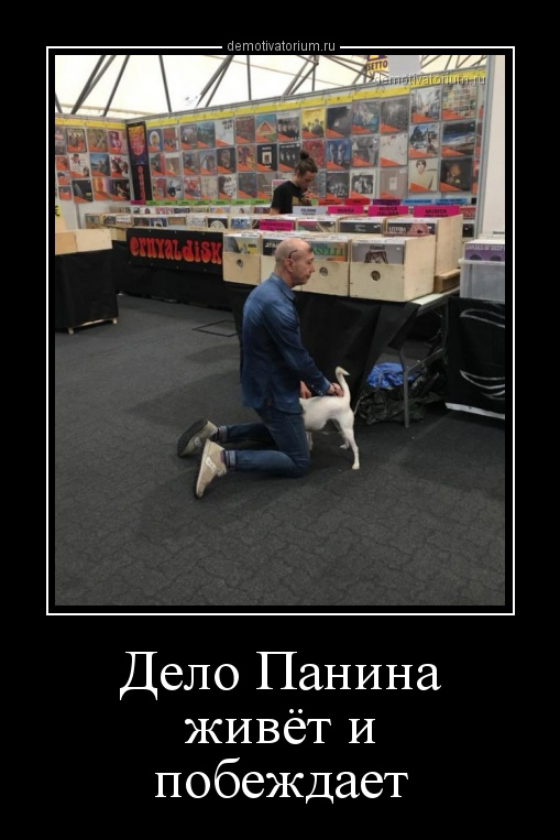 delo_panina_jivet_i_pobejdaet_158417.jpg
