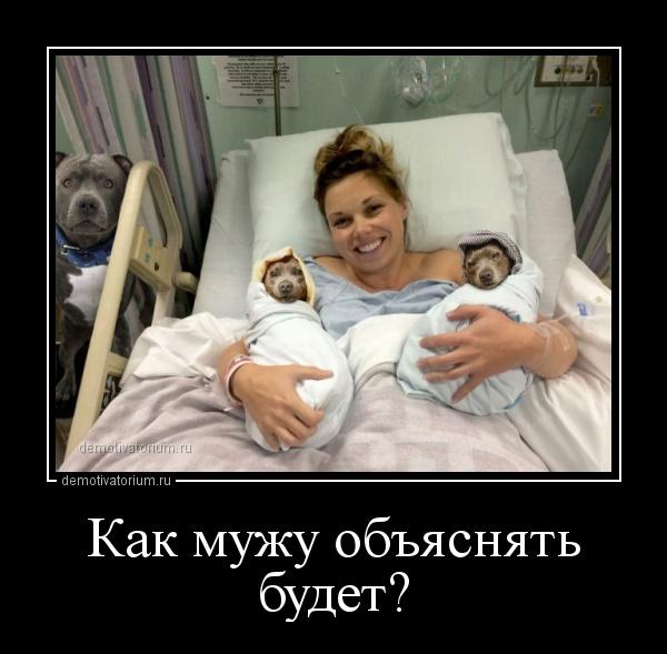 kak_muju_objasnjat_budet_158735.jpg