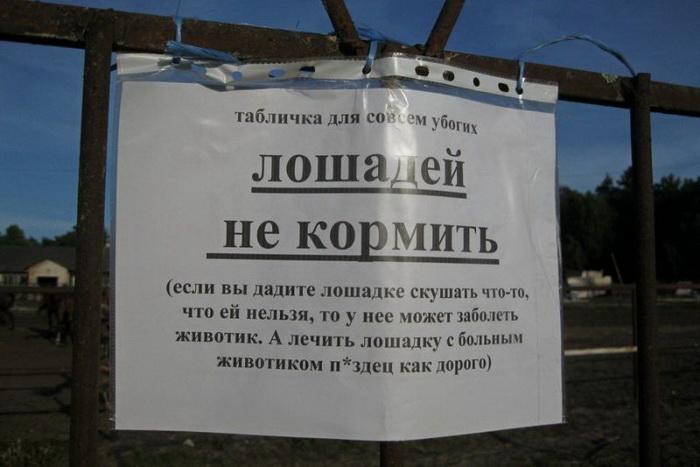 1529434823_fotopodborka-34.jpg