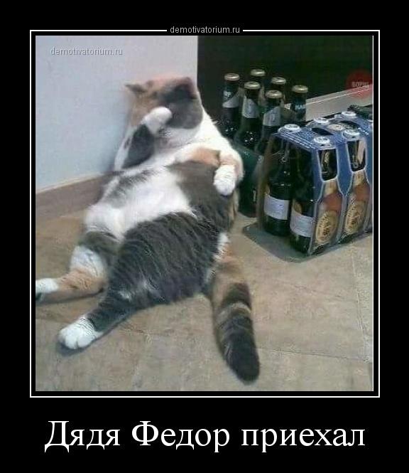 djadja_fedor_priehal_159637.jpg