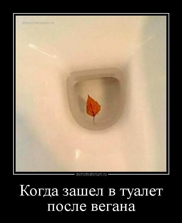 demotivatorium_ru_kogda_zashel_v_tualet_posle_vegana_160551.jpg