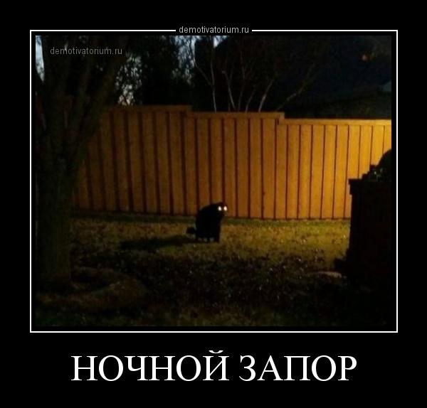 demotivatorium_ru_nochnoj_zapor_160027.jpg