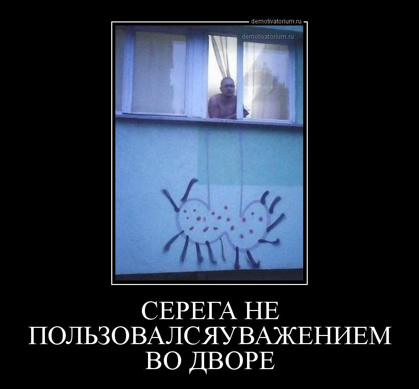 demotivatorium_ru_serega_ne_pol_zovalsjauvajeniem_vo_dvore_160055.jpg