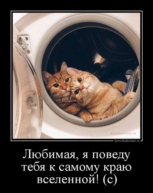 demotivatorium_ru_lubimaja_ja_povedu_tebja_k_samomu_krau_vselennoj_s_160783.jpg
