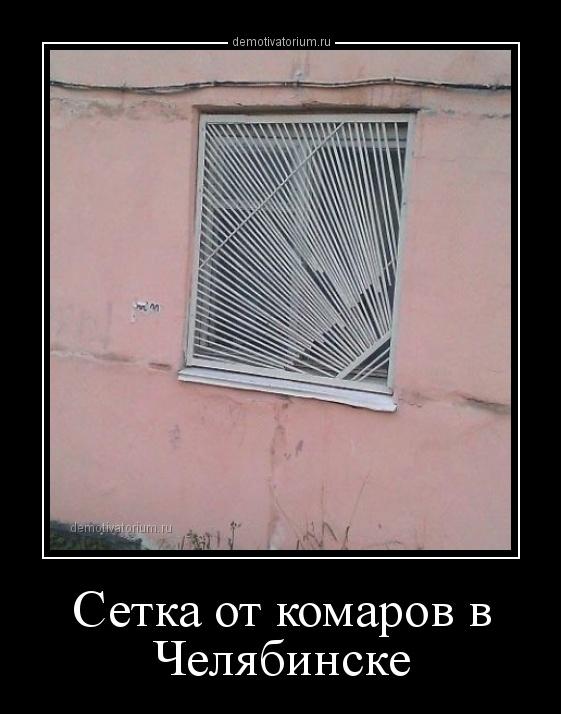 demotivatorium_ru_setka_ot_komarov_v_cheljabinske_160793.jpg