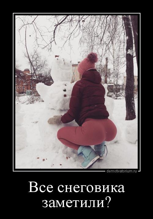 demotivatorium_ru_vse_snegovika_zametili_160840.jpg
