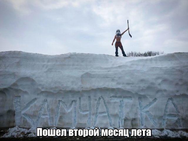 1530909524_prikoly-10.jpg