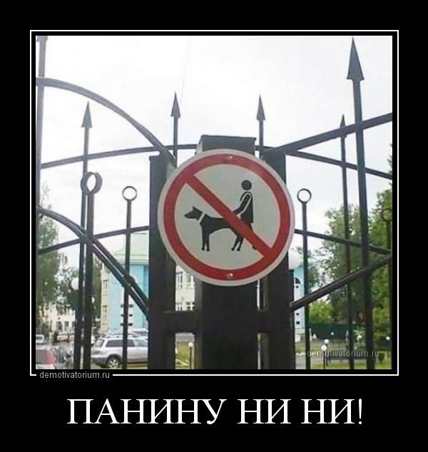 demotivatorium_ru_paninu_ni_ni_161155.jpg