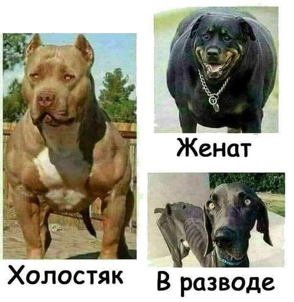 fotopodborka_chetverga_79_foto_14.jpg