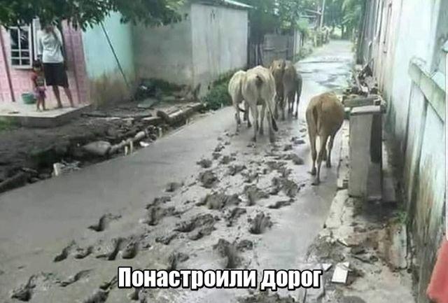 fotopodborka_sredy_70_foto_1.jpg