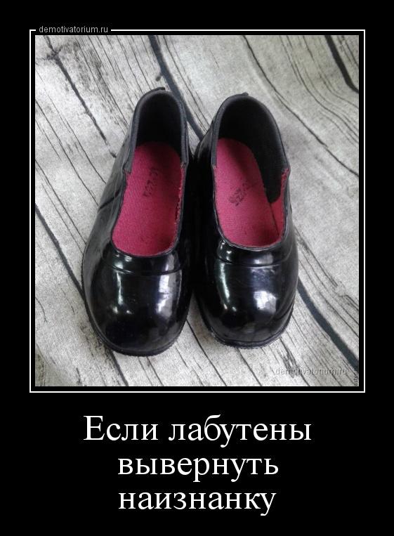 demotivatorium_ru_esli_labuteni_vivernut_naiznanku_161380.jpg
