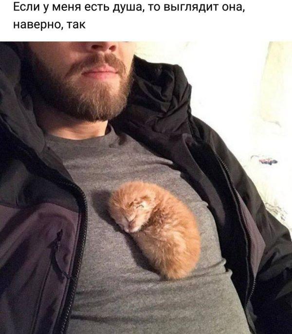 fotopodborka_sredy_52_foto_5.jpg