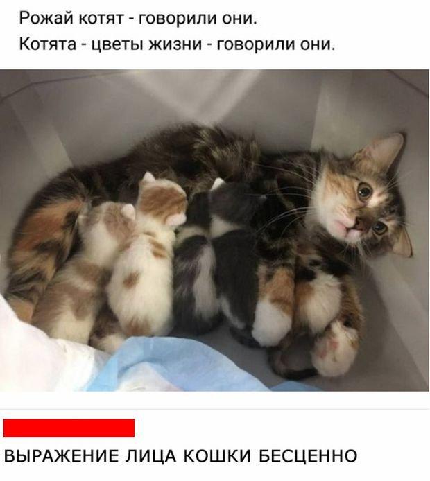 fotopodborka_ponedelnika_79_foto_4.jpg